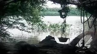 Tarzan-X: Ensnarl of Jane - Affixing 3