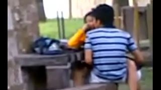 Indian Academy Students Fucking far public park Voyeur Recorded by people