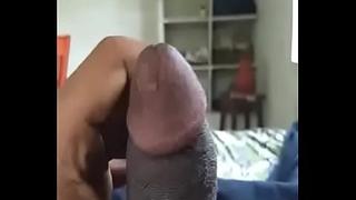Indian gumshoe